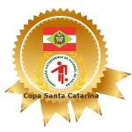 Copa Santa Catarina -  edição