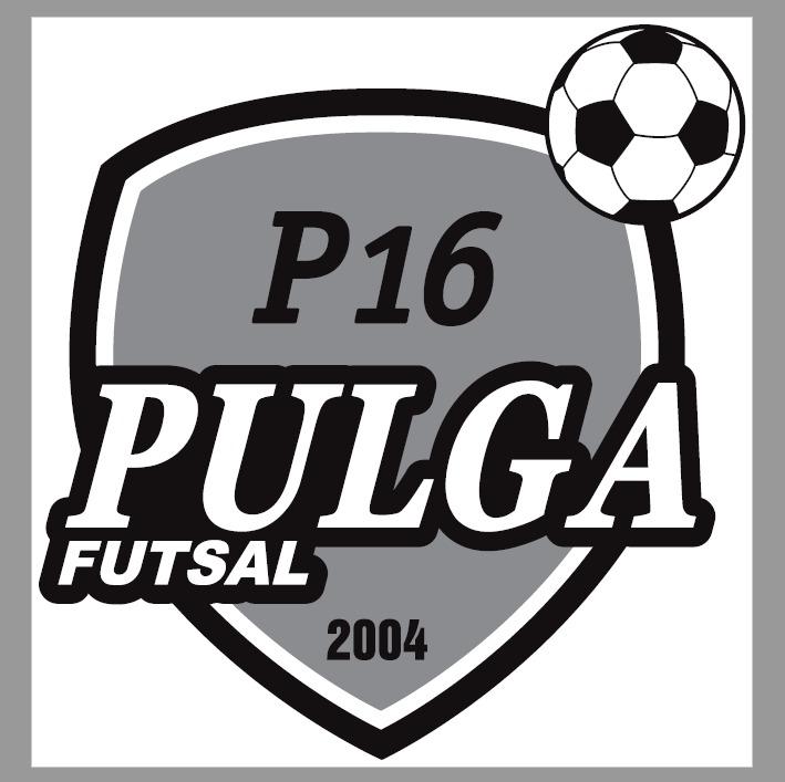 Danilo Pulga Futsal