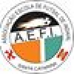 FME Indaial/CERC XV de Maio/AEFI Futsal